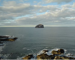 Bass rock in the North Sea